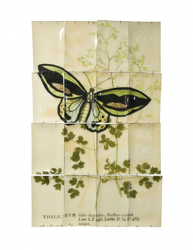 """Butterflies"" Wall Hanging"