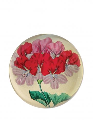 """Pink Geranium"" Dome Paperweight"