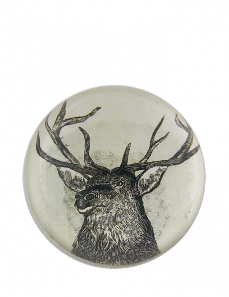 """Buck"" Dome Paperweight"