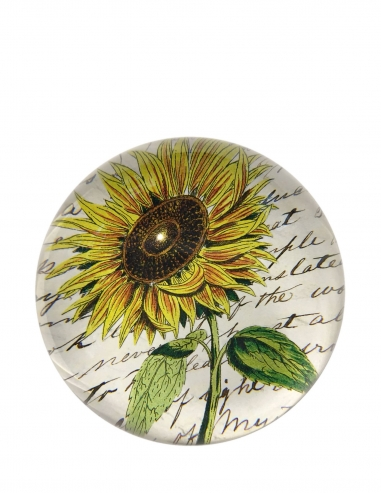 """Sunflower"" Dome Paperweight"