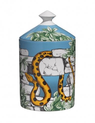 """Il serpente del giardino segreto"" - Vela perfumada"