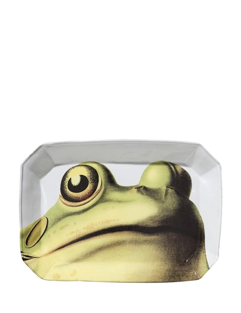 """""""Frog"""" Platter"""